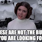 Princess Leia | THESE ARE NOT THE BUNS YOU ARE LOOKING FOR | image tagged in princess leia | made w/ Imgflip meme maker