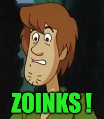ZOINKS ! | made w/ Imgflip meme maker