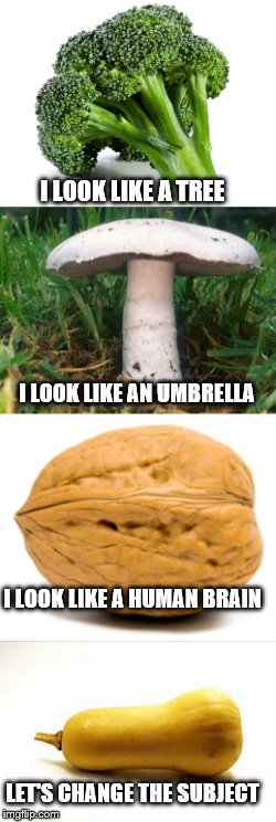 Squash: The Most Insecure of all produce and natural foods | I LOOK LIKE A TREE LET'S CHANGE THE SUBJECT I LOOK LIKE A HUMAN BRAIN I LOOK LIKE AN UMBRELLA | image tagged in dick,penis,funny memes,food,funny food | made w/ Imgflip meme maker