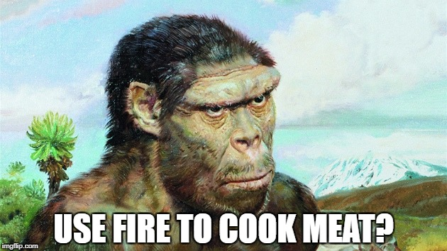 USE FIRE TO COOK MEAT? | image tagged in skeptical primitive | made w/ Imgflip meme maker