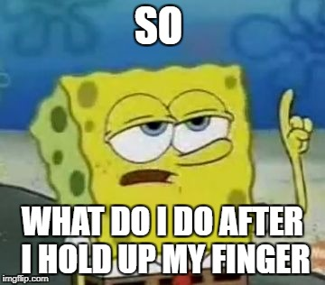 Ill Have You Know Spongebob Meme | SO WHAT DO I DO AFTER I HOLD UP MY FINGER | image tagged in memes,ill have you know spongebob | made w/ Imgflip meme maker