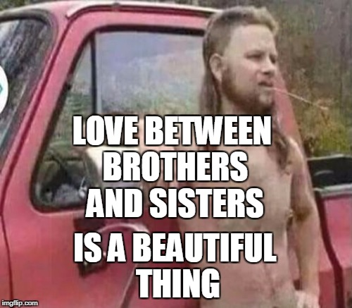 LOVE BETWEEN BROTHERS AND SISTERS IS A BEAUTIFUL THING | made w/ Imgflip meme maker