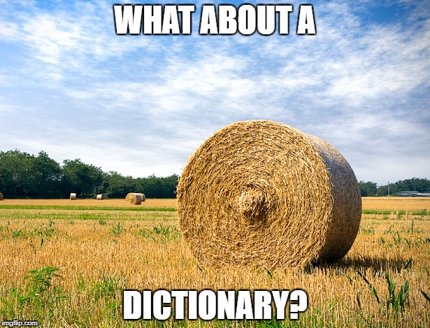 WHAT ABOUT A DICTIONARY? | made w/ Imgflip meme maker