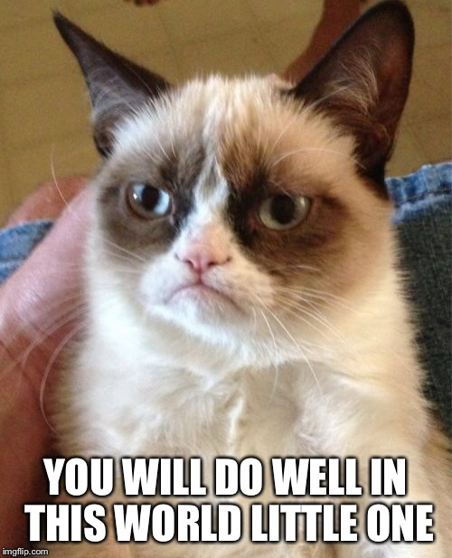 Grumpy Cat Meme | YOU WILL DO WELL IN THIS WORLD LITTLE ONE | image tagged in memes,grumpy cat | made w/ Imgflip meme maker