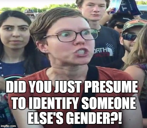 DID YOU JUST PRESUME TO IDENTIFY SOMEONE ELSE'S GENDER?! | made w/ Imgflip meme maker