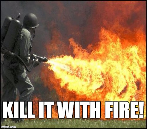 KILL IT WITH FIRE! | made w/ Imgflip meme maker