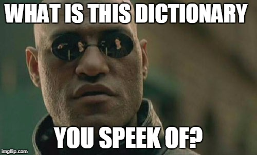 Matrix Morpheus Meme | WHAT IS THIS DICTIONARY YOU SPEEK OF? | image tagged in memes,matrix morpheus | made w/ Imgflip meme maker