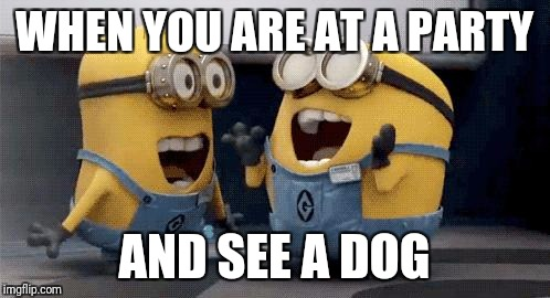 Excited Minions Meme | WHEN YOU ARE AT A PARTY AND SEE A DOG | image tagged in memes,excited minions | made w/ Imgflip meme maker