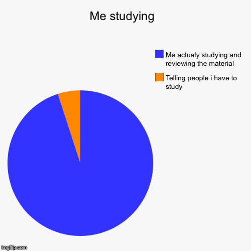 Me studying  | Telling people i have to study, Me actualy studying and reviewing the material | image tagged in funny,pie charts | made w/ Imgflip pie chart maker