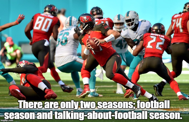 There are only two seasons; football season and talking-about-football season. | image tagged in nfl,football,nfl football,take a knee,america,winning | made w/ Imgflip meme maker