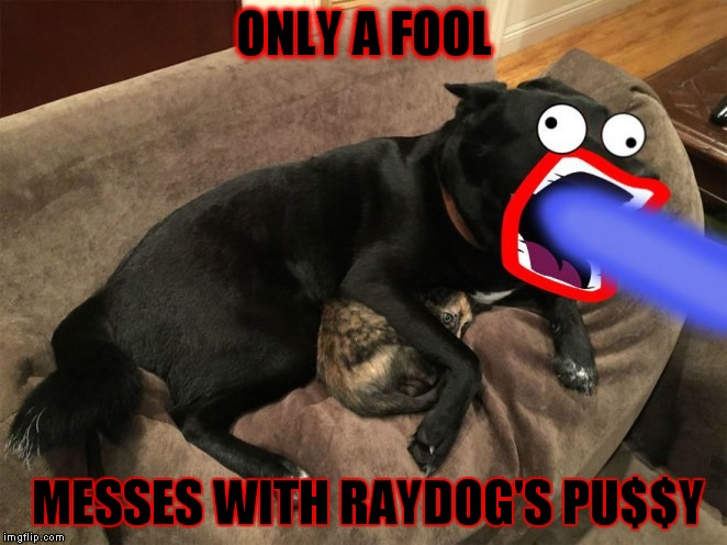 Check yo'self! | ONLY A FOOL MESSES WITH RAYDOG'S PU$$Y | image tagged in raydog,protection,dude | made w/ Imgflip meme maker