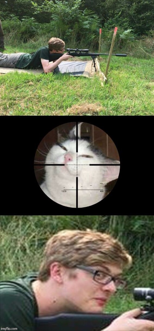 kaelan the killer smugcat | image tagged in smug cat,kaelan the killer,shitpost,sniper,memes | made w/ Imgflip meme maker