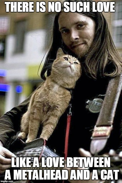 Ancient Egyptians considered cats to be gods for a very good reason! | THERE IS NO SUCH LOVE LIKE A LOVE BETWEEN A METALHEAD AND A CAT | image tagged in memes,cats,metal,powermetalhead,love,metalhead | made w/ Imgflip meme maker