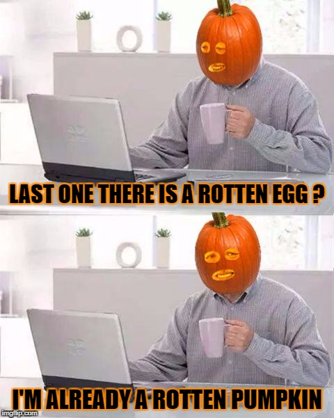 Hide the Pumpkin Harold | LAST ONE THERE IS A ROTTEN EGG ? I'M ALREADY A ROTTEN PUMPKIN | image tagged in hide the pain pumpkin,pumpkin,pumpkin spice,rotten,hide and seek | made w/ Imgflip meme maker