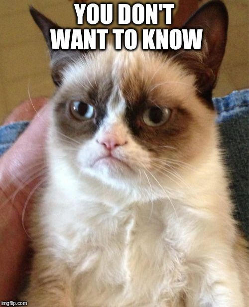 Grumpy Cat Meme | YOU DON'T WANT TO KNOW | image tagged in memes,grumpy cat | made w/ Imgflip meme maker