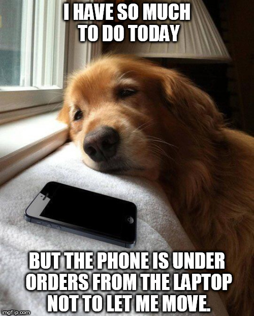 Monday sad pup |  I HAVE SO MUCH TO DO TODAY; BUT THE PHONE IS UNDER ORDERS FROM THE LAPTOP NOT TO LET ME MOVE. | image tagged in monday sad pup | made w/ Imgflip meme maker