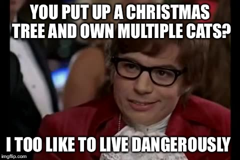 I Too Like To Live Dangerously | YOU PUT UP A CHRISTMAS TREE AND OWN MULTIPLE CATS? I TOO LIKE TO LIVE DANGEROUSLY | image tagged in memes,i too like to live dangerously,americanpenguin | made w/ Imgflip meme maker
