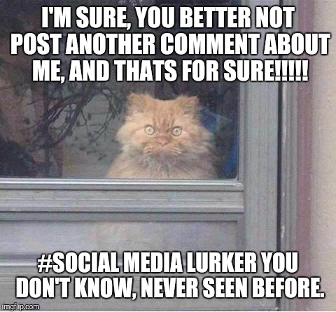 Stalkers | I'M SURE, YOU BETTER NOT POST ANOTHER COMMENT ABOUT ME, AND THATS FOR SURE!!!!! #SOCIAL MEDIA LURKER YOU DON'T KNOW, NEVER SEEN BEFORE. | image tagged in stalker | made w/ Imgflip meme maker