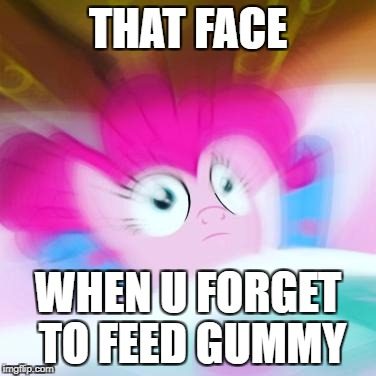 wake up call | THAT FACE WHEN U FORGET TO FEED GUMMY | image tagged in wake up call | made w/ Imgflip meme maker