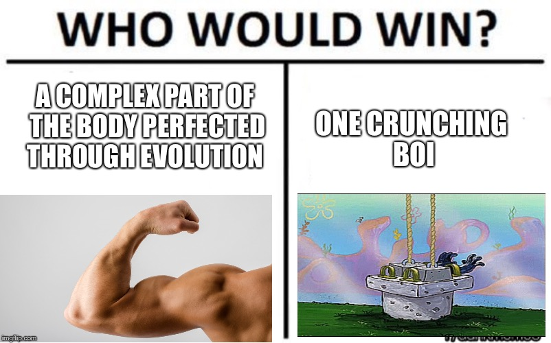 who would win | A COMPLEX PART OF THE BODY PERFECTED THROUGH EVOLUTION ONE CRUNCHING BOI | image tagged in who would win | made w/ Imgflip meme maker
