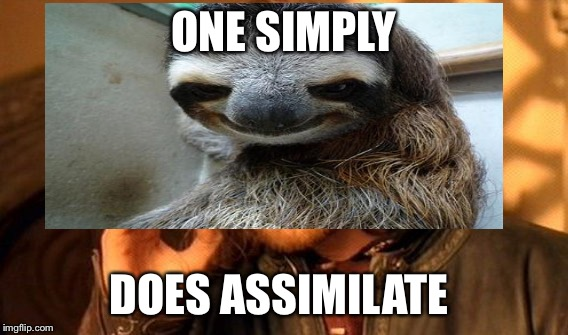 ONE SIMPLY DOES ASSIMILATE | made w/ Imgflip meme maker