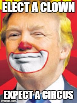 Donald Trump the Clown | ELECT A CLOWN EXPECT A CIRCUS | image tagged in donald trump the clown | made w/ Imgflip meme maker