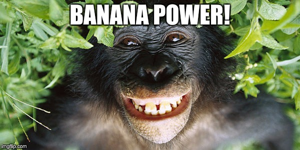Laughing Monkey | BANANA POWER! | image tagged in banana,monkey,joke,laughter | made w/ Imgflip meme maker
