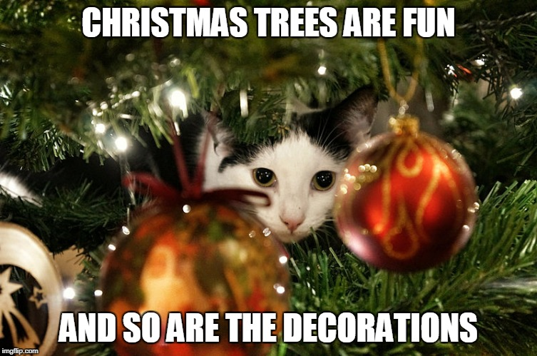 CHRISTMAS TREES ARE FUN AND SO ARE THE DECORATIONS | made w/ Imgflip meme maker