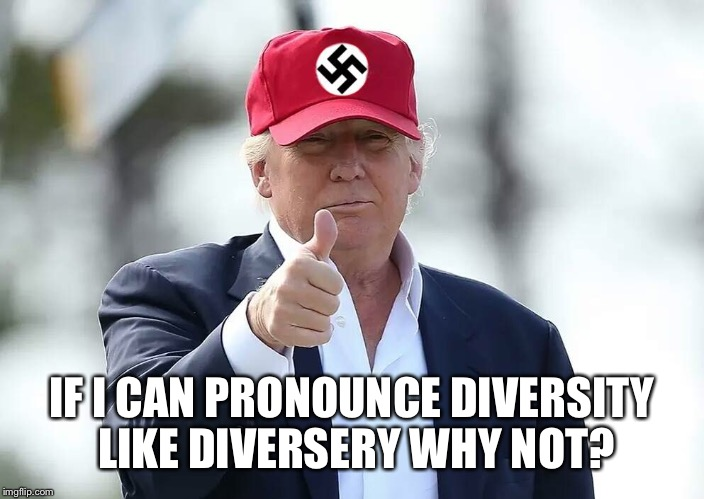 IF I CAN PRONOUNCE DIVERSITY LIKE DIVERSERY WHY NOT? | made w/ Imgflip meme maker
