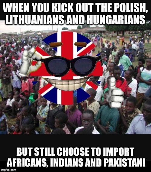 WHEN YOU KICK OUT THE POLISH, LITHUANIANS AND HUNGARIANS BUT STILL CHOOSE TO IMPORT AFRICANS, INDIANS AND PAKISTANI | image tagged in memes,brexit,immigration | made w/ Imgflip meme maker