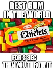 Gum | BEST GUM IN THE WORLD FOR 3 SEC     THEN YOU THROW IT | image tagged in funny | made w/ Imgflip meme maker