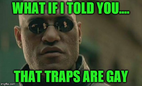 The answer to life, the universe and everything! | WHAT IF I TOLD YOU.... THAT TRAPS ARE GAY | image tagged in memes,matrix morpheus,trap,are traps gay | made w/ Imgflip meme maker