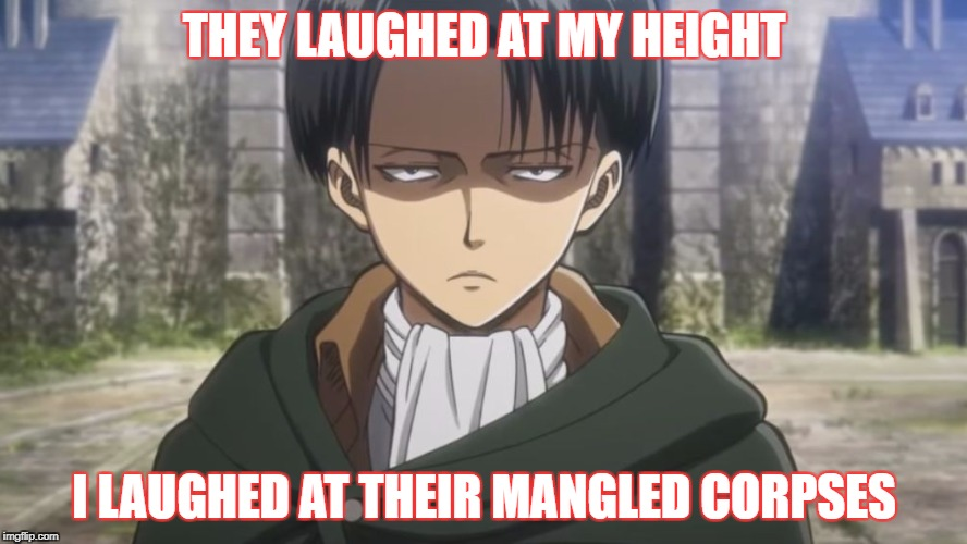 Levi, No | THEY LAUGHED AT MY HEIGHT I LAUGHED AT THEIR MANGLED CORPSES | image tagged in levi,no | made w/ Imgflip meme maker