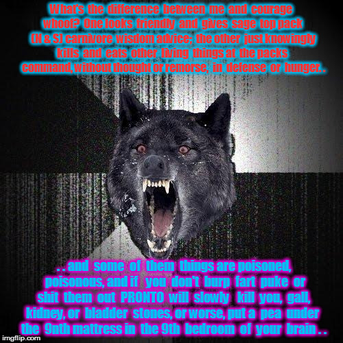 Insanity Wolf Meme | What's  the  difference  between  me  and  courage  whoof?  One looks  friendly  and  gives  sage  top pack  (N & S) carnivore  wisdom advic | image tagged in memes,insanity wolf | made w/ Imgflip meme maker