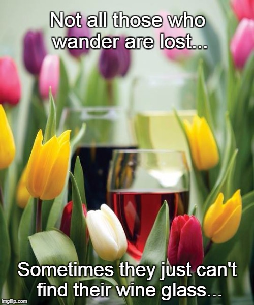 Not all who wander... | Not all those who wander are lost... Sometimes they just can't find their wine glass... | image tagged in not lost,can't find,wine glass | made w/ Imgflip meme maker