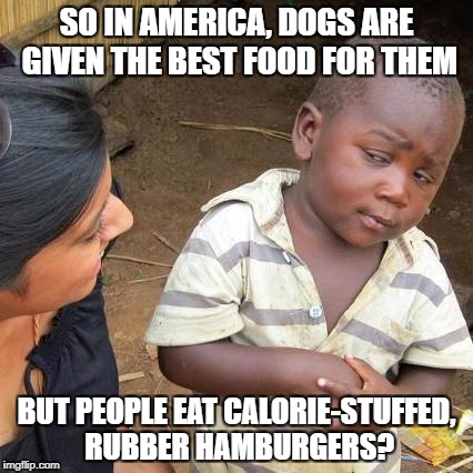 Third World Skeptical Kid Meme | SO IN AMERICA, DOGS ARE GIVEN THE BEST FOOD FOR THEM BUT PEOPLE EAT CALORIE-STUFFED, RUBBER HAMBURGERS? | image tagged in memes,third world skeptical kid | made w/ Imgflip meme maker