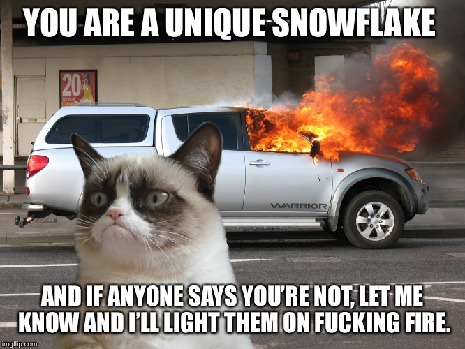 Grumpy Cat Fire Car | YOU ARE A UNIQUE SNOWFLAKE AND IF ANYONE SAYS YOU'RE NOT, LET ME KNOW AND I'LL LIGHT THEM ON F**KING FIRE. | image tagged in grumpy cat fire car | made w/ Imgflip meme maker