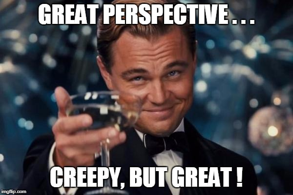 Leonardo Dicaprio Cheers Meme | GREAT PERSPECTIVE . . . CREEPY, BUT GREAT ! | image tagged in memes,leonardo dicaprio cheers | made w/ Imgflip meme maker
