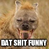 Mohawk hyena | DAT SHIT FUNNY | image tagged in mohawk hyena | made w/ Imgflip meme maker