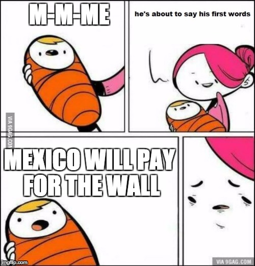 he is about to say his first words | M-M-ME MEXICO WILL PAY FOR THE WALL | image tagged in he is about to say his first words | made w/ Imgflip meme maker