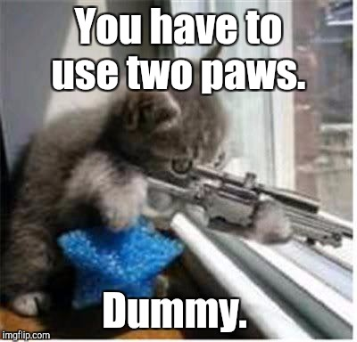You have to use two paws. Dummy. | made w/ Imgflip meme maker