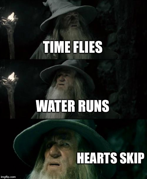 Deep Thoughts (A deep quote from Butch Hartman) | TIME FLIES WATER RUNS HEARTS SKIP | image tagged in memes,confused gandalf,time,quote,deep thoughts | made w/ Imgflip meme maker