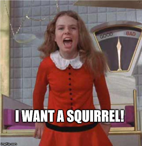 veruca salt | I WANT A SQUIRREL! | image tagged in veruca salt | made w/ Imgflip meme maker