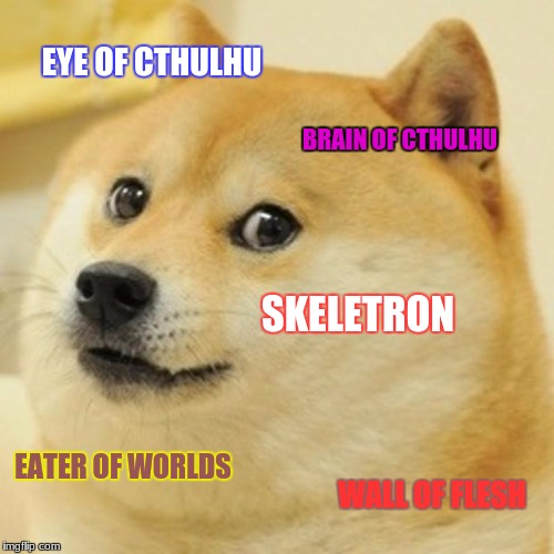 Terraria Bosses Doge | EYE OF CTHULHU BRAIN OF CTHULHU SKELETRON EATER OF WORLDS WALL OF FLESH | image tagged in memes,doge,terraria,terraria rules,terraria is the best game in the world,terraria bosses | made w/ Imgflip meme maker