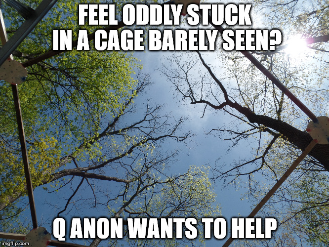 I can't I'm inna cage | FEEL ODDLY STUCK IN A CAGE BARELY SEEN? Q ANON WANTS TO HELP | image tagged in cage,q anon,white rabbit,4 chan | made w/ Imgflip meme maker