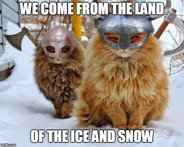 Viking Cats | WE COME FROM THE LAND OF THE ICE AND SNOW | image tagged in viking cats | made w/ Imgflip meme maker