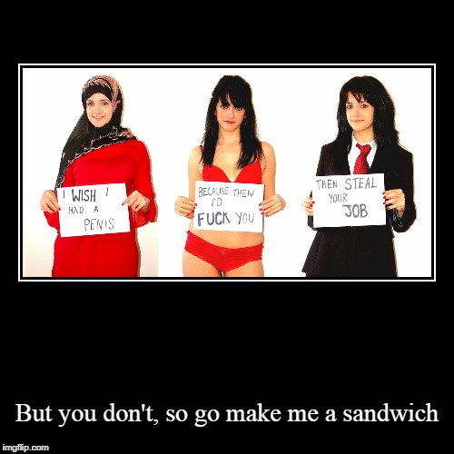 But you don't, so go make me a sandwich | image tagged in funny,demotivationals | made w/ Imgflip demotivational maker