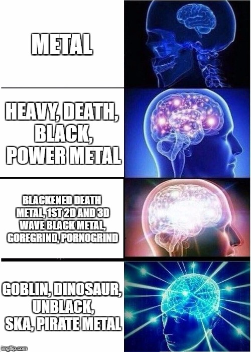 Expanding Brain Meme | METAL HEAVY, DEATH, BLACK, POWER METAL BLACKENED DEATH METAL, 1ST 2D AND 3D WAVE BLACK METAL, GOREGRIND, PORNOGRIND GOBLIN, DINOSAUR, UNBLAC | image tagged in memes,expanding brain,metal,funny,heavy metal | made w/ Imgflip meme maker
