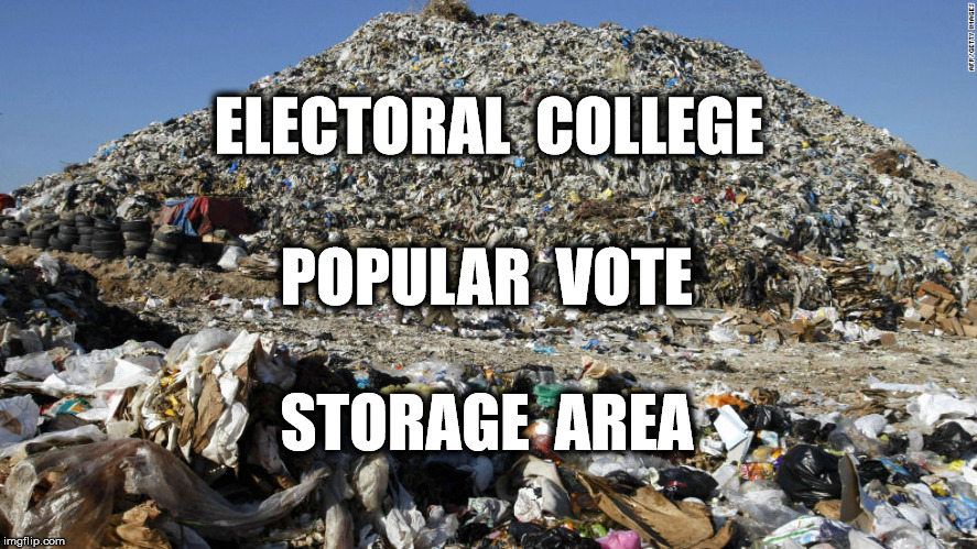 Electoral College Funny Meme : How the electoral college rigged the election for trump rolling