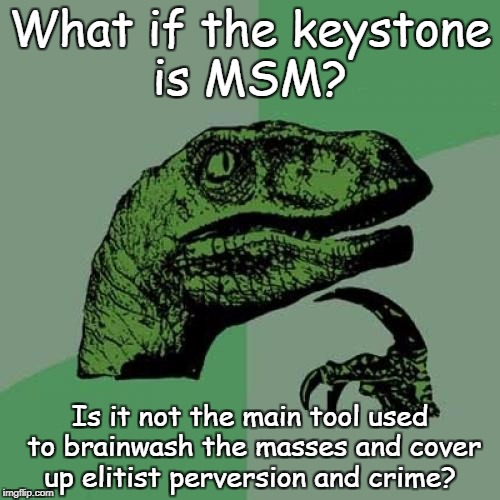 Philosoraptor Meme | What if the keystone is MSM? Is it not the main tool used to brainwash the masses and cover up elitist perversion and crime? | image tagged in memes,philosoraptor | made w/ Imgflip meme maker